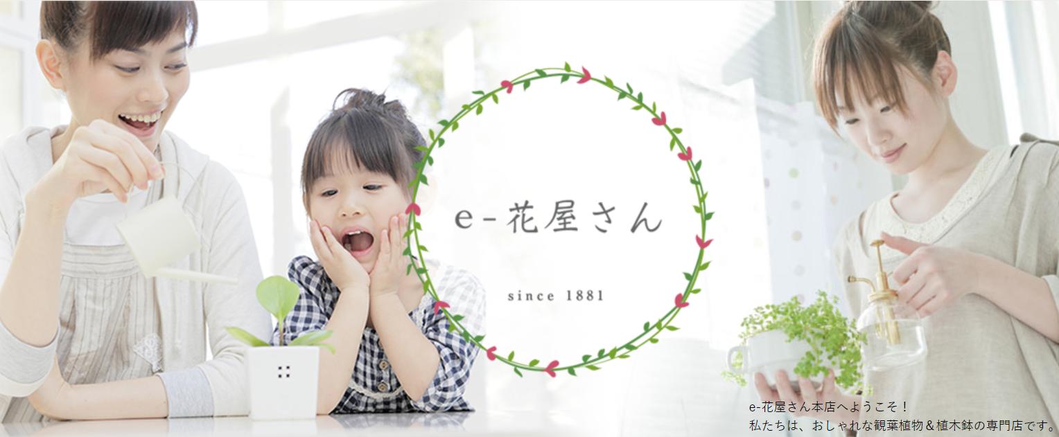 e-花屋さんのイメージ